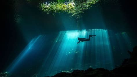 Best Underwater 4k Wallpapers & Images in HD and 8k resolution