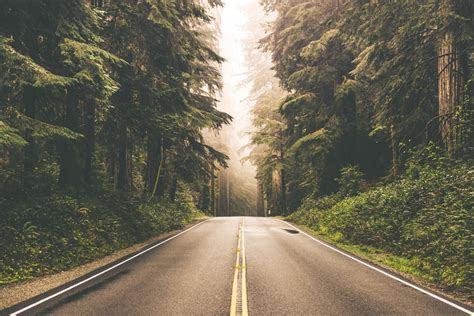 Ignite Your Wanderlust with 100 Images of The Open Road